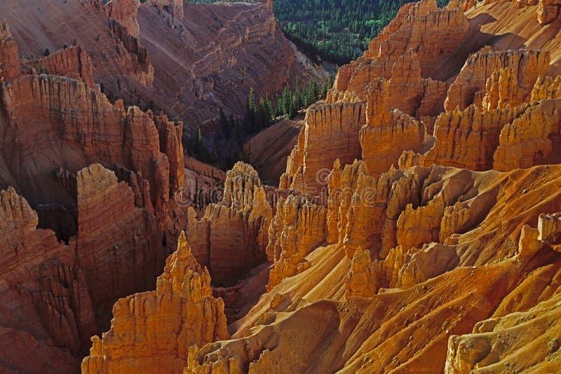 Cedar Breaks National Monument, UT immagine stock
