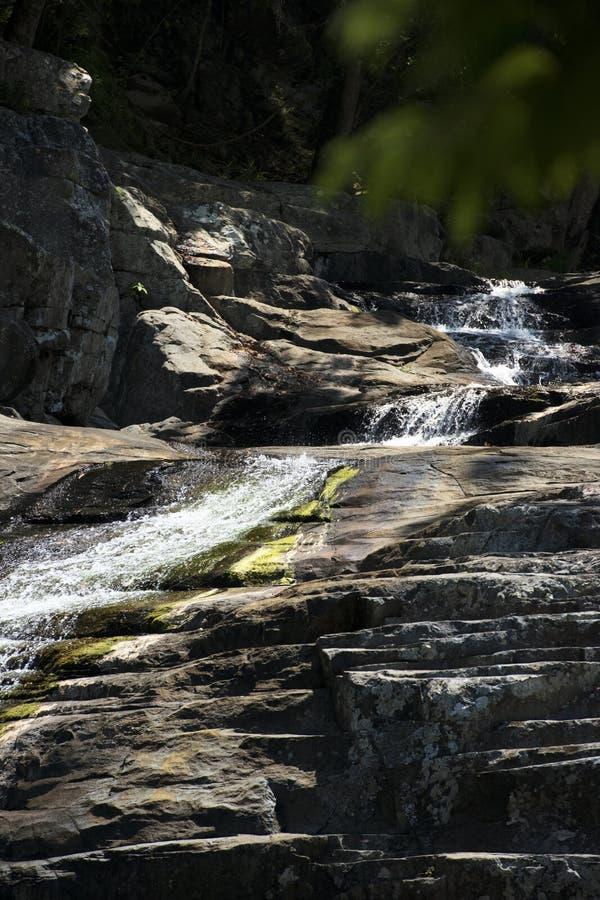 Cedar Creek в Samford, Квинсленде стоковая фотография rf