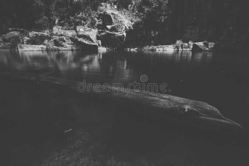 Cedar Creek в Samford, Квинсленде стоковое фото rf