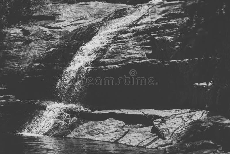 Cedar Creek в Samford, Квинсленде стоковые изображения