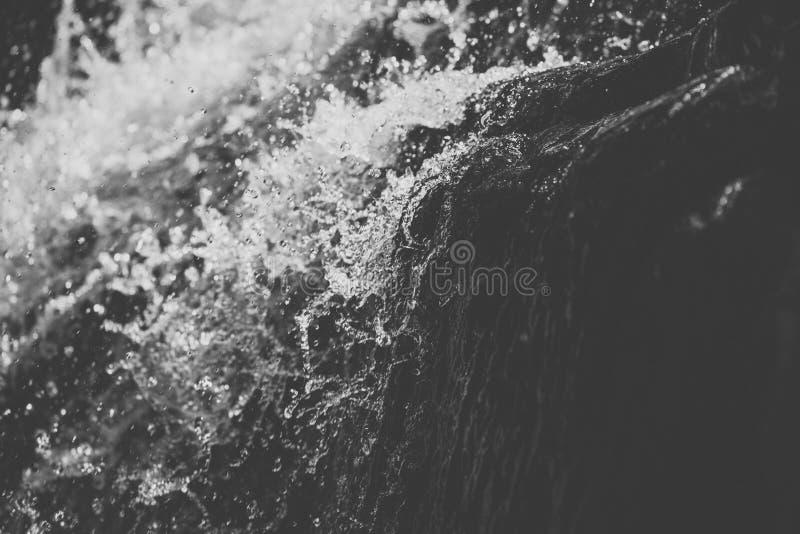 Cedar Creek em Samford, Queensland fotos de stock