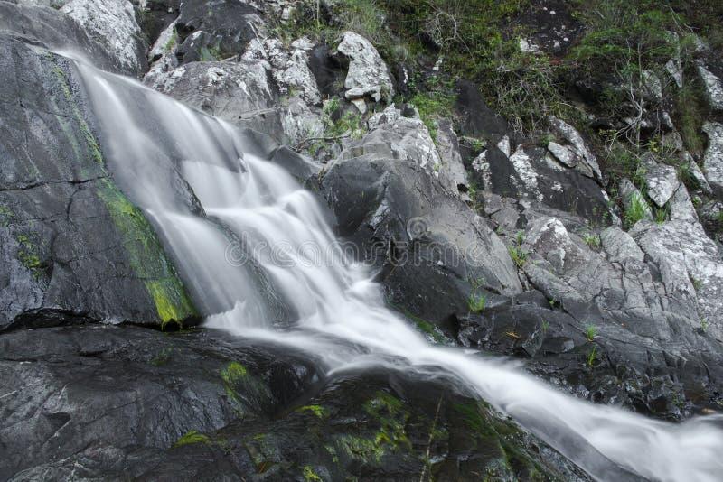 Cedar Creek Falls en el soporte Tamborine imágenes de archivo libres de regalías