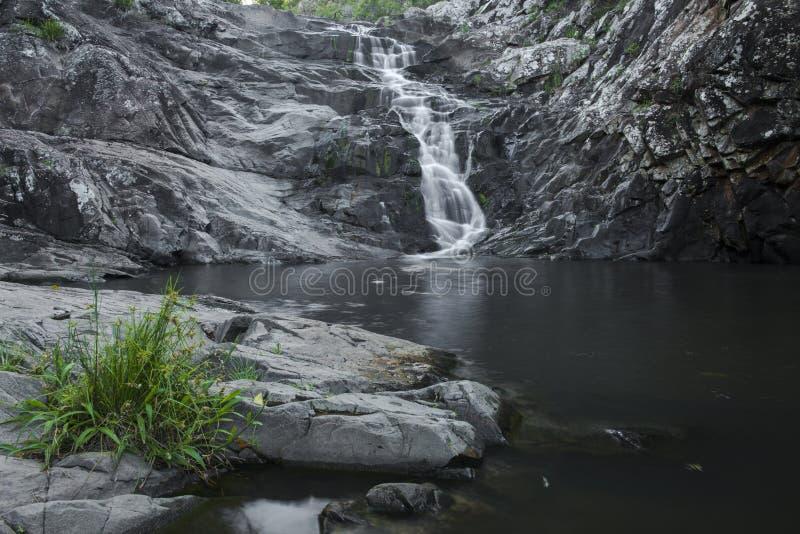 Cedar Creek Falls en el soporte Tamborine imagen de archivo