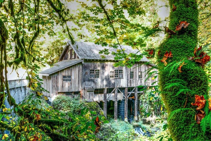Cedar Creek Grist Mill - skogsmark, WA royaltyfri foto