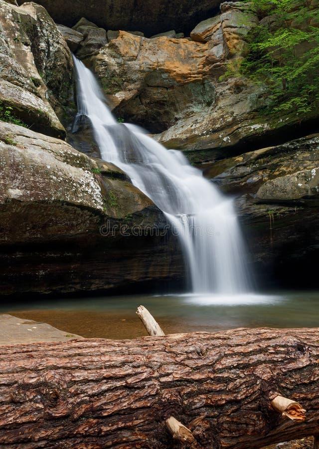 Cedar Falls с упаденным деревом стоковая фотография