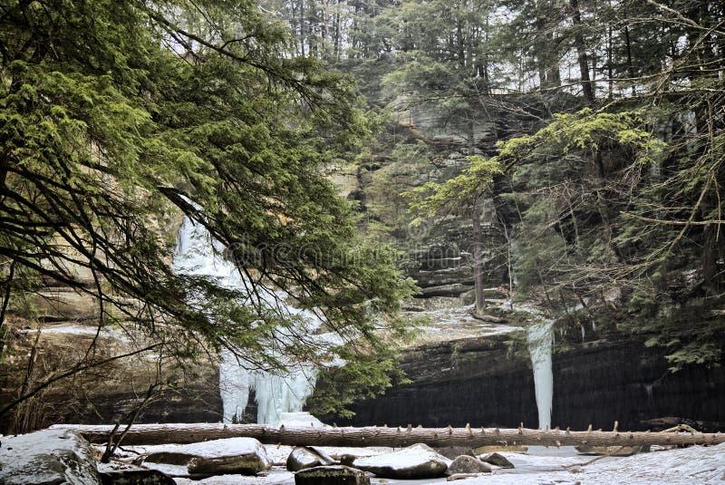 Cedar Falls royaltyfri bild