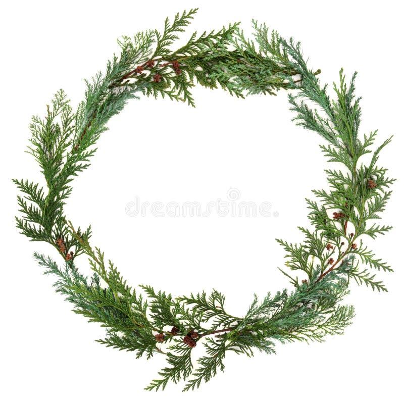 Cedar Leaf Wreath royalty-vrije stock fotografie