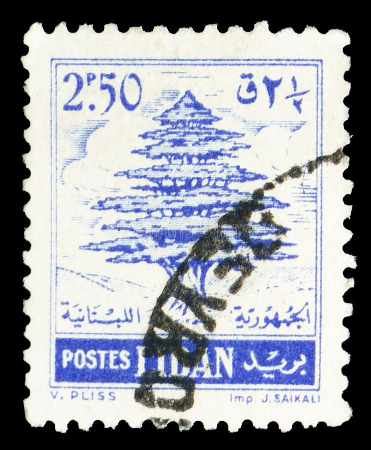 Cedar of Lebanon, Country Symbols serie, circa 1957 stock photography