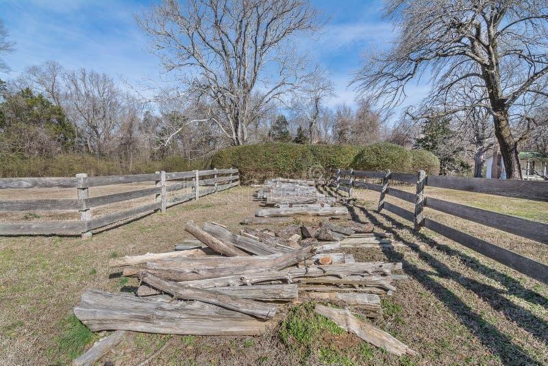 Cedar Logs fotografie stock