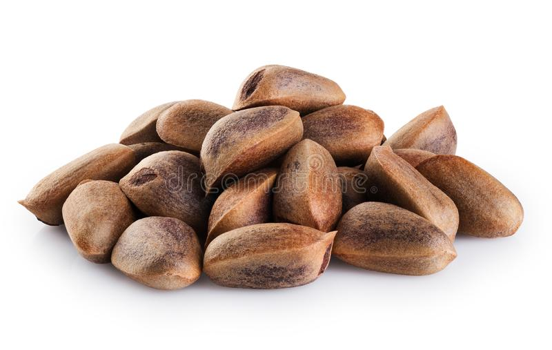 Cedar pine nuts  isolated on white background. With clipping path stock image