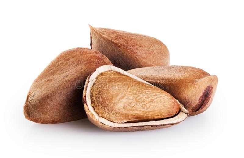 Cedar pine nuts  isolated on white background. With clipping path royalty free stock photos