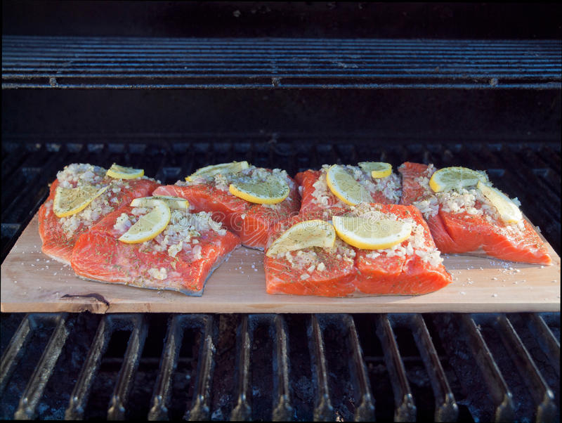 Download Cedar plank salmon stock photo. Image of food, herb, grill - 16933828