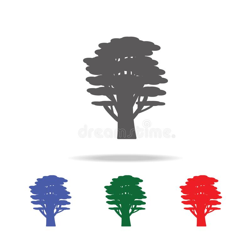 cedar tree icon. Elements of trees in multi colored icons. Premium quality graphic design icon. Simple icon for websites, web desi vector illustration