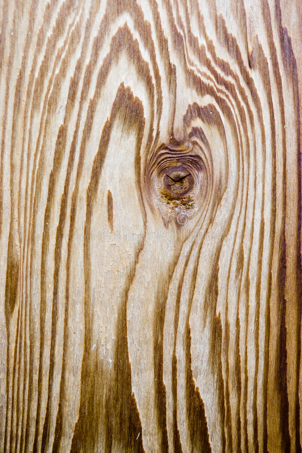 Free Cedar Wood Grain Royalty Free Stock Photos - 5470328
