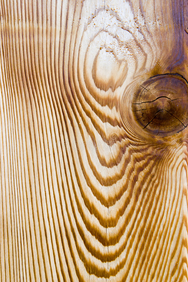 Download Cedar wood grain stock image. Image of chips, house, amber - 5831509