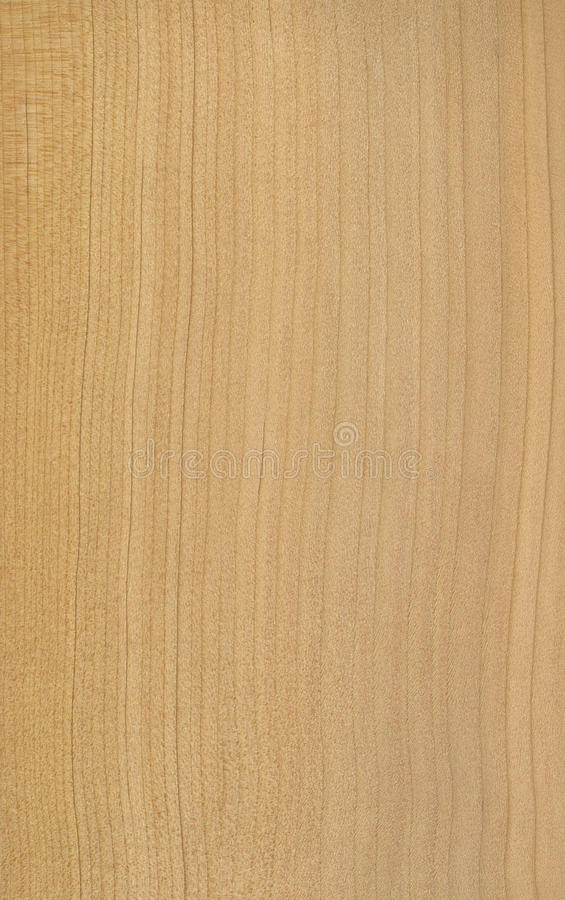 Free Ceder Wood Veneer Texture Royalty Free Stock Photo - 18613945