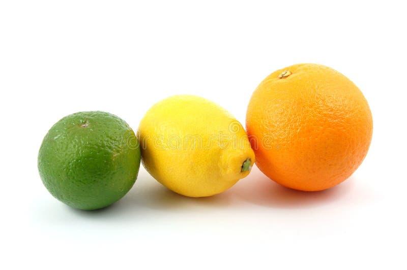 cedrata owocowa cytryny pomarańcze zdjęcia stock