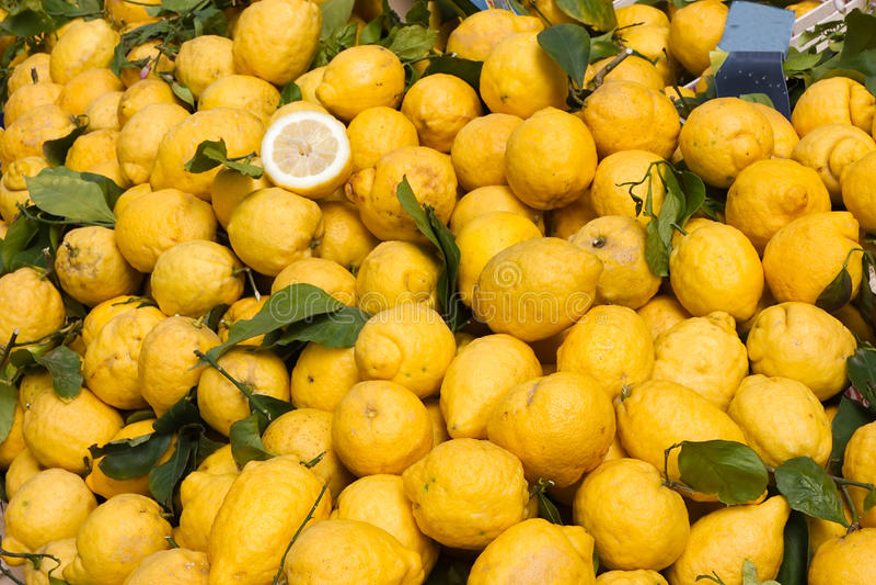 Cedro siciliano immagine stock. Immagine di cucina, sano - 17590151