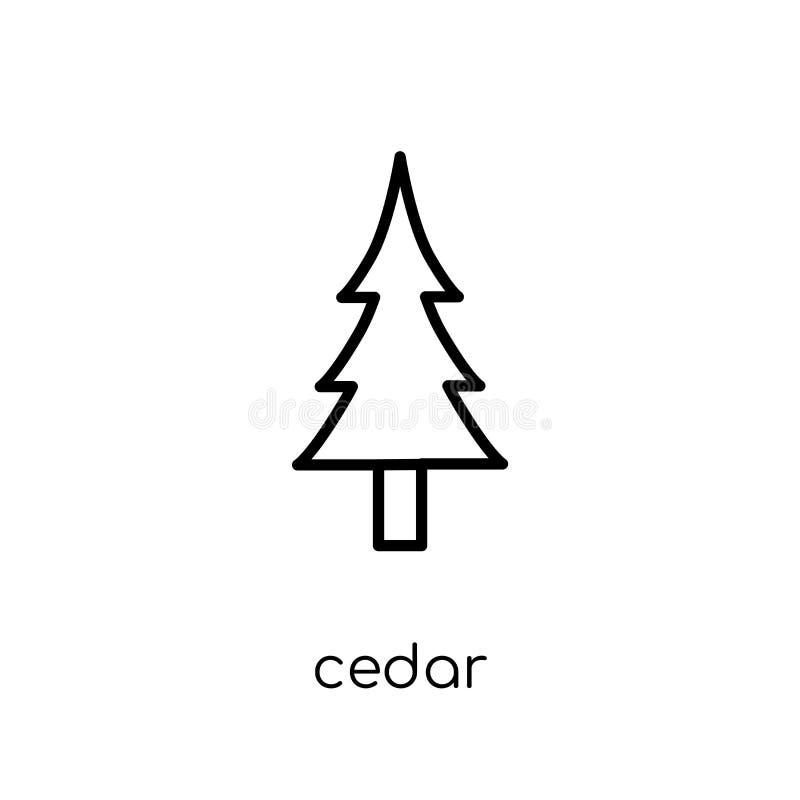Cedrowa ikona Modna nowożytna płaska liniowa wektorowa Cedrowa ikona na bielu royalty ilustracja