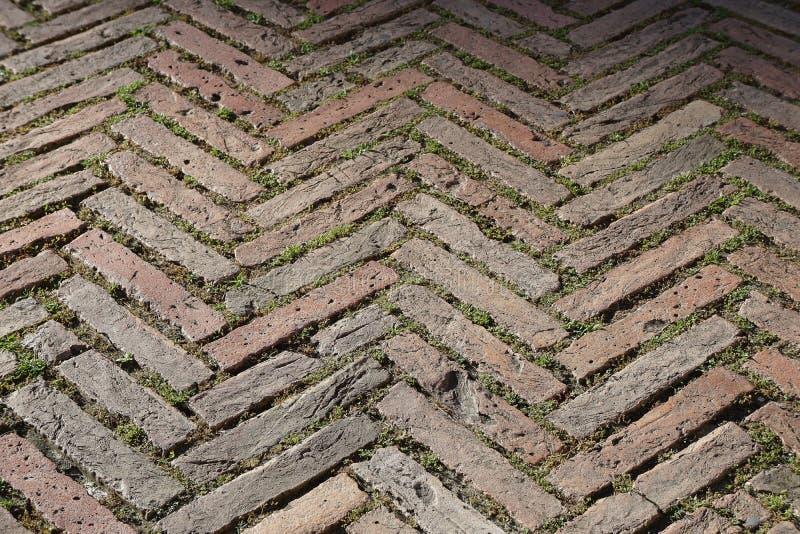 Cegły herringbone wzór fotografia royalty free