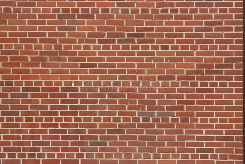 cegły ściana zdjęcie royalty free
