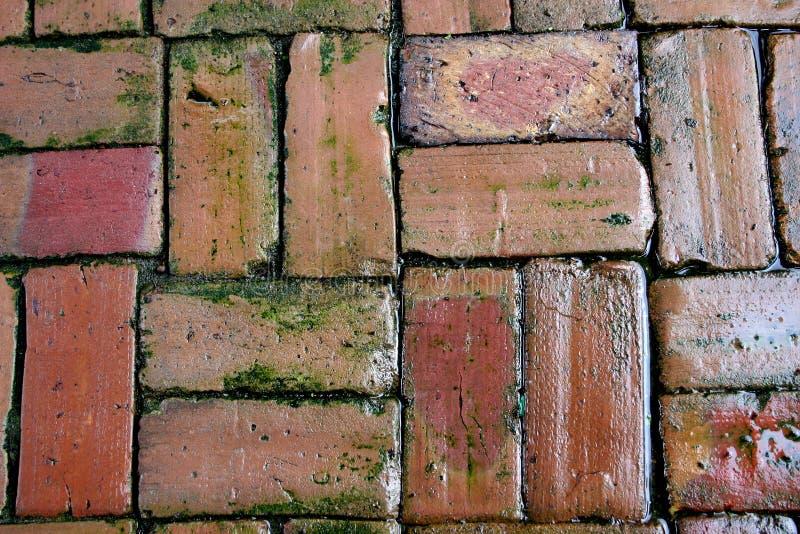 cegły oldclay tło obraz royalty free
