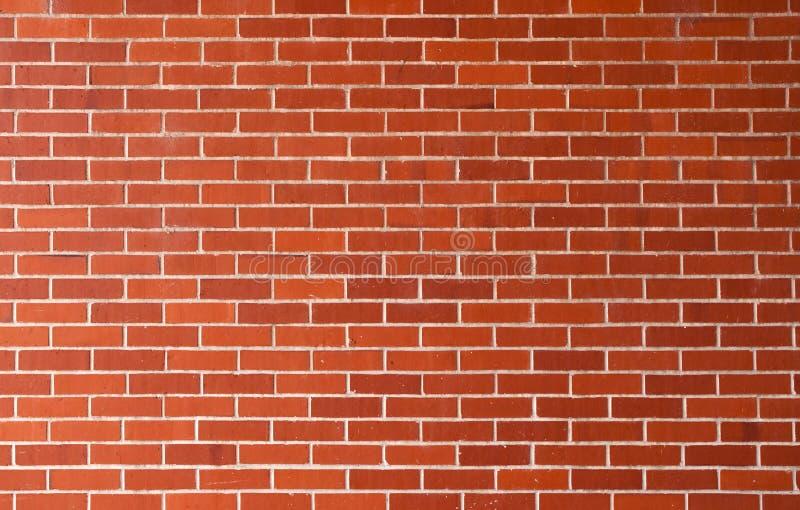 ceglana nowa ściana zdjęcie royalty free