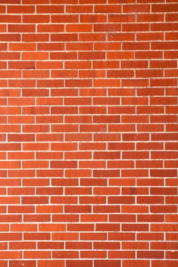 ceglana nowa ściana