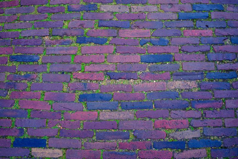 Ceglanego footpath drogowy tło, tekstura z mech fotografia royalty free