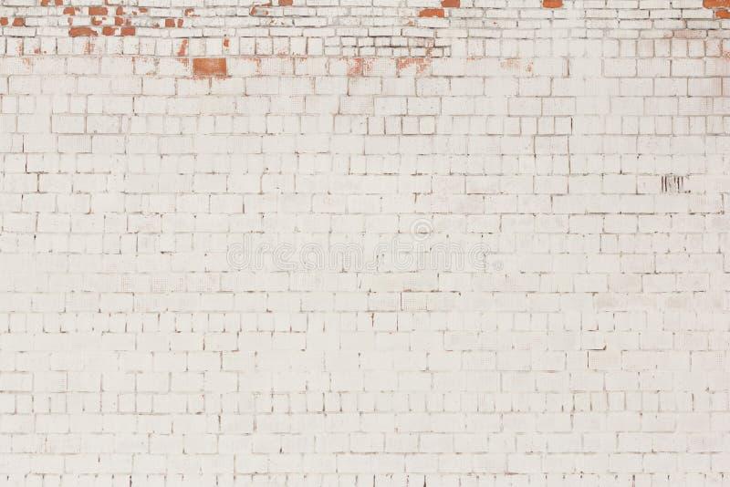 Ceglany tło, stara ściana z cegieł malujący biel z spadać z tynku, i obraz royalty free
