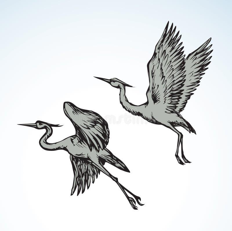 Cegonha Desenho do vetor ilustração do vetor