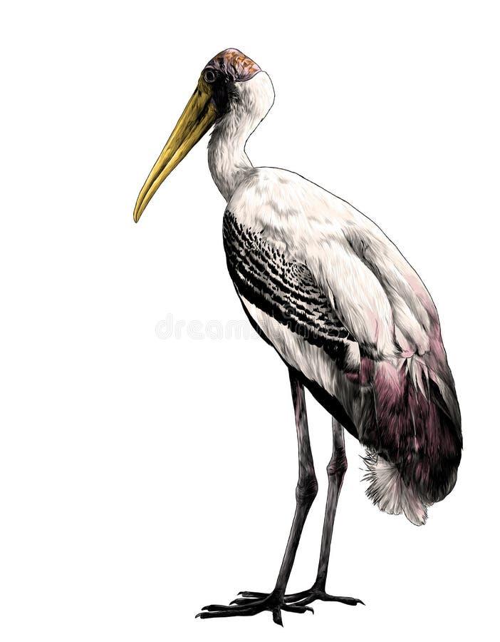 A cegonha do pássaro está na altura completa lateralmente ilustração do vetor