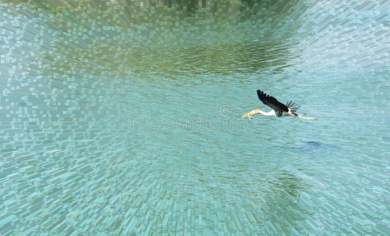 Cegonha pintada de voo foto de stock