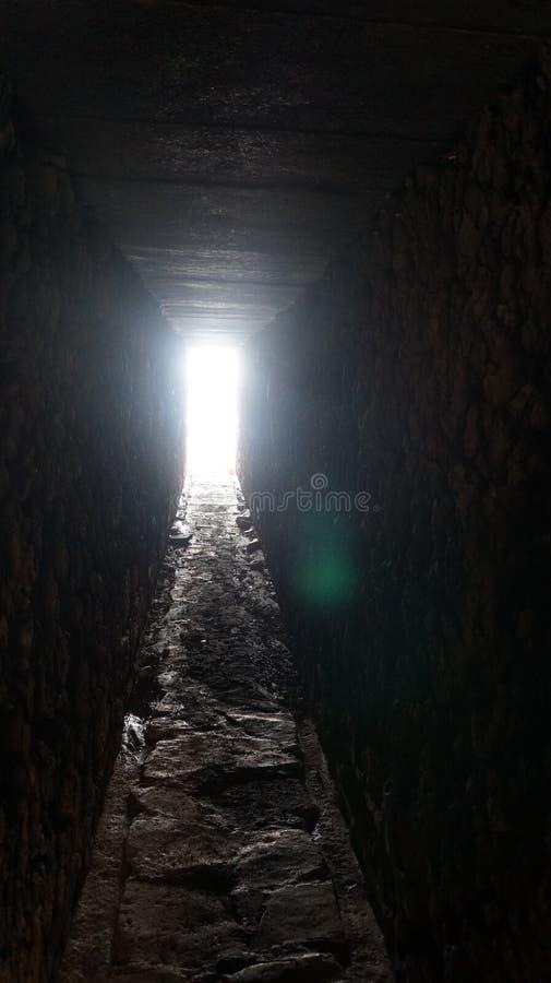 Free Cehrus Royalty Free Stock Photos - 113894328