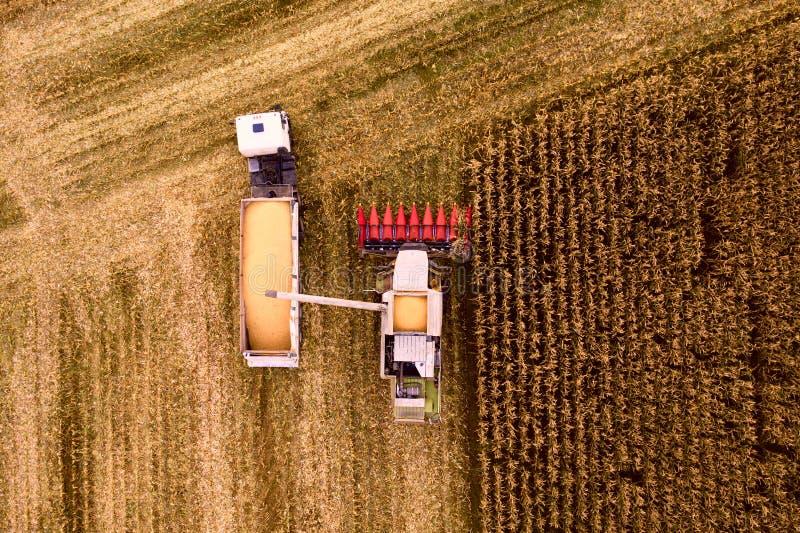 A ceifeira de liga derrama a grão do milho em um caminhão fotografia de stock royalty free