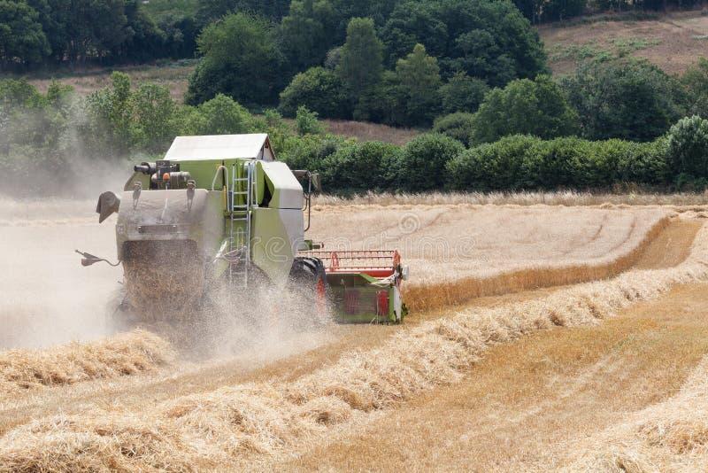 Ceifeira de liga que colhe uma colheita do trigo fotografia de stock