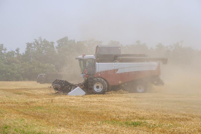 Ceifeira em clubes da poeira no trabalho na colheita do trigo em um campo enorme no verão Assim, o nascimento do pão ocorre imagens de stock