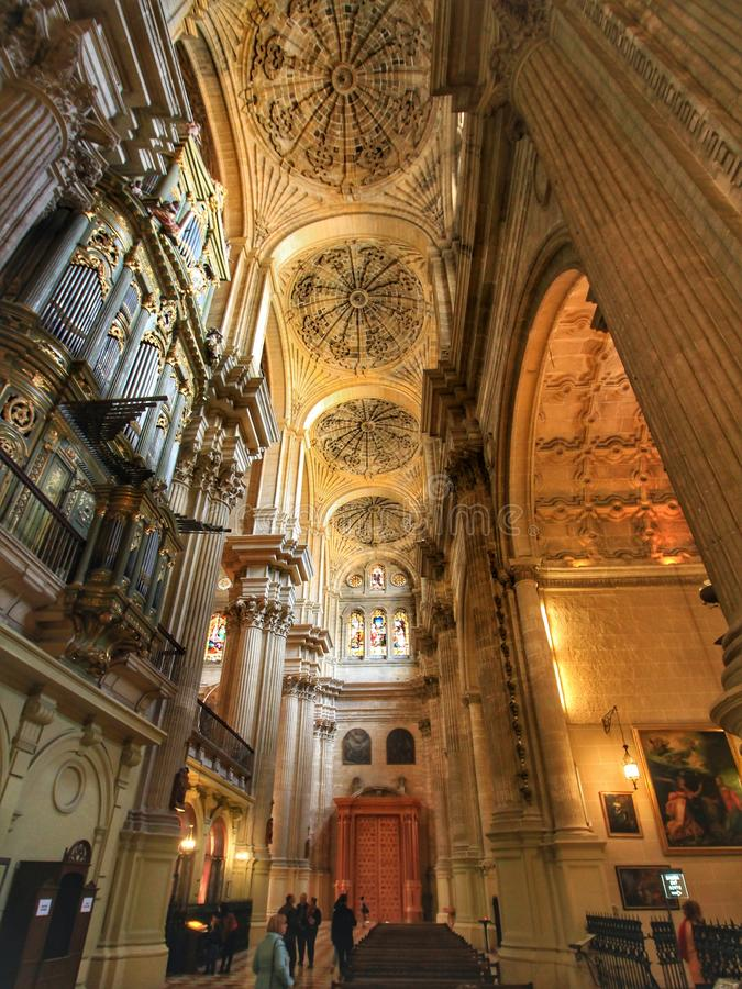 The ceiling of Malaga cathedral, Spain. A wide angle view of the ceiling of Malaga Cathedral, Spain royalty free stock images