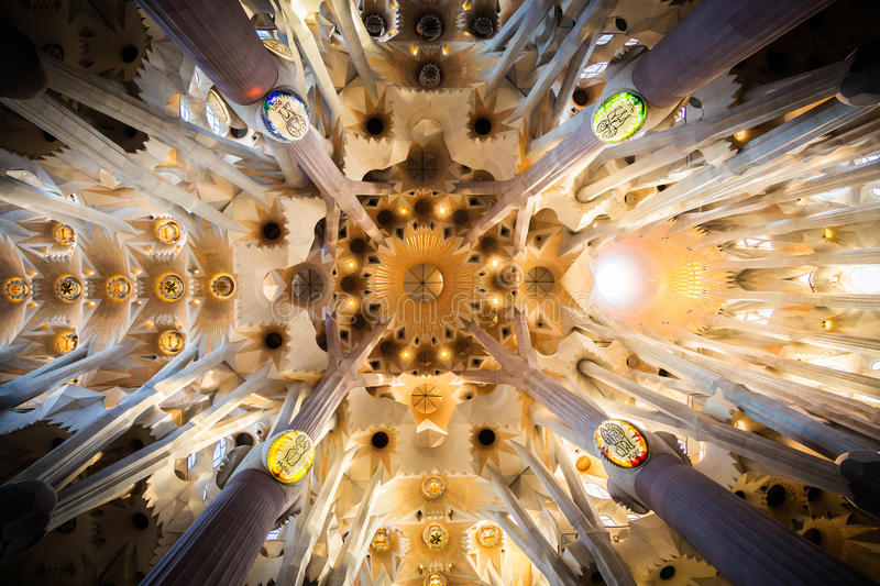 Download Ceiling of Sagrada Familia editorial stock image. Image of photography - 49094959