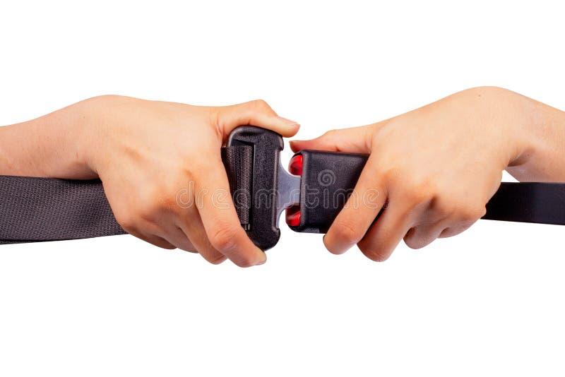 ceinture de sécurité d'utilisation de deux mains sur le fond blanc images libres de droits