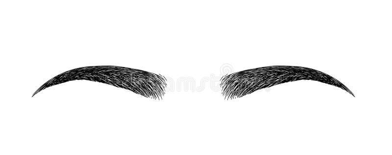 ceja formada perfectamente maquillaje permanente y tatuaje Cosmético para las cejas stock de ilustración