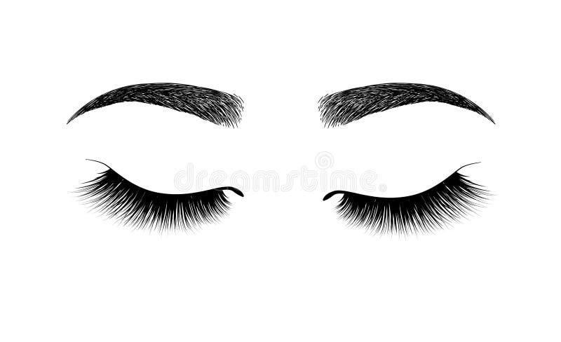ceja formada perfectamente maquillaje permanente y tatuaje Cosmético para las cejas Extensión de la pestaña Un maquillaje hermoso ilustración del vector