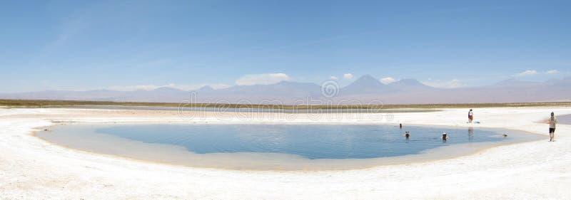 Cejar, laguna del deserto immagini stock libere da diritti