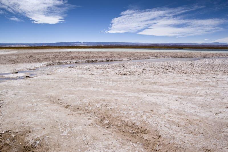Cejar Lagune, Chile lizenzfreies stockbild