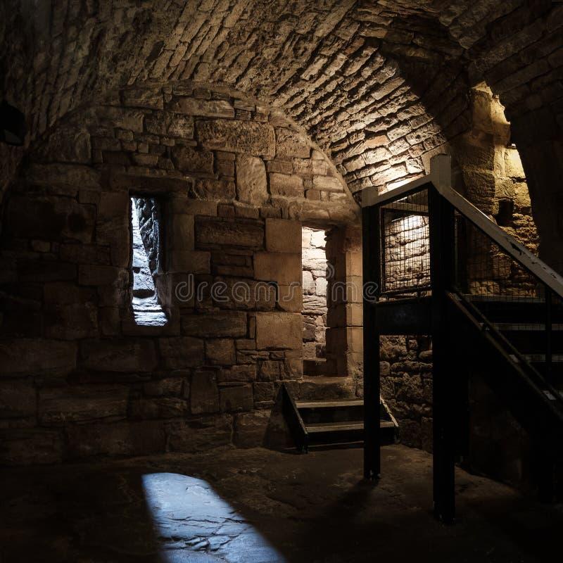 Cela no castelo de Tantallon em Escócia fotografia de stock