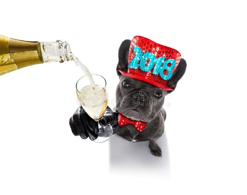 Celberation σκυλιών καλής χρονιάς στοκ εικόνες