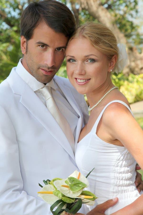 Celebración de la boda fotografía de archivo libre de regalías