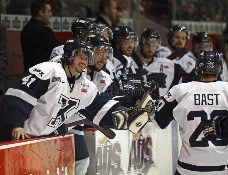 Celebración de la meta del hockey imagenes de archivo