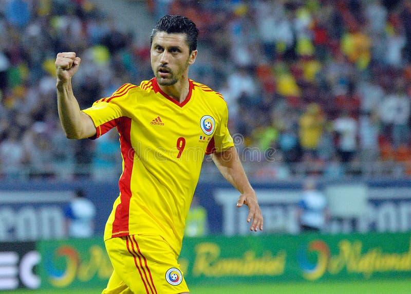 Celebración de la meta del jugador Ciprian Marica de Footbal del rumano fotos de archivo libres de regalías