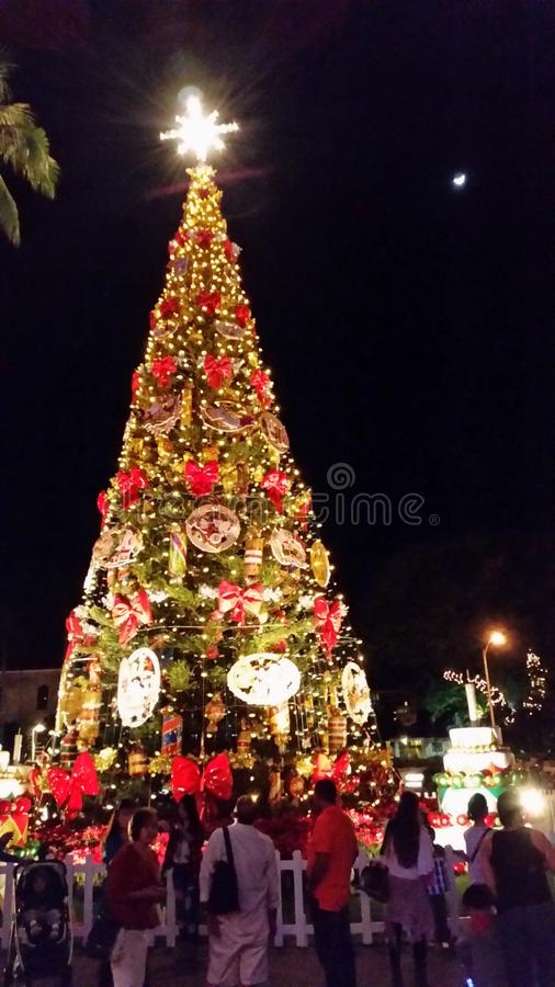 Celebración de la Navidad en Honolulu Oahu Hawaii foto de archivo libre de regalías